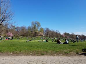 Prospect Park in Brooklyn